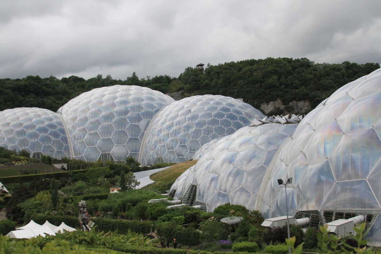 Visite de Eden Project (3)