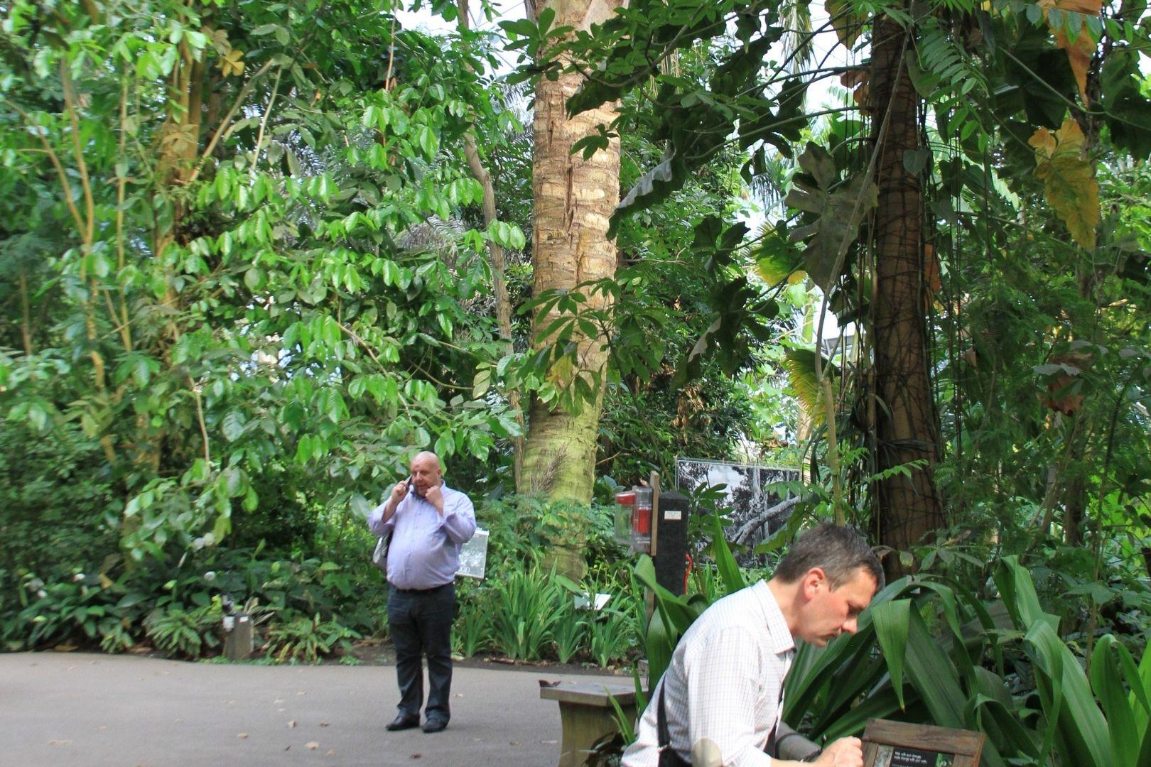 Visite de Eden Project (4)