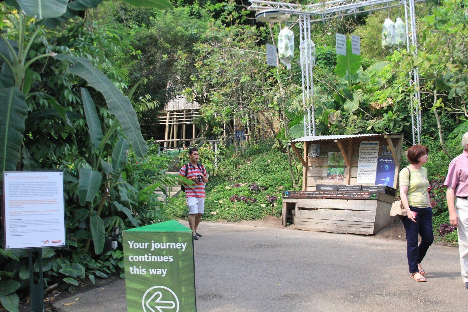 Visite de Eden Project (7)